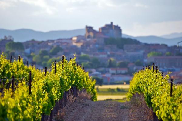 Weine-aus-dem-Languedoc-Roussillion